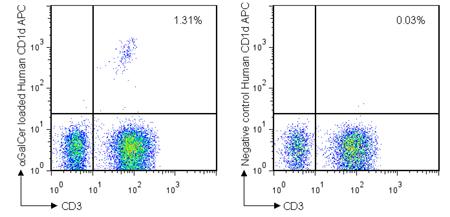 Example data for human CD1d tetramer